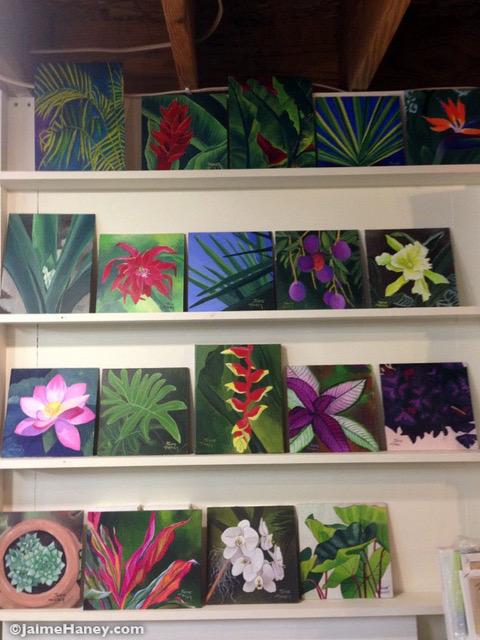 Tropical paintings