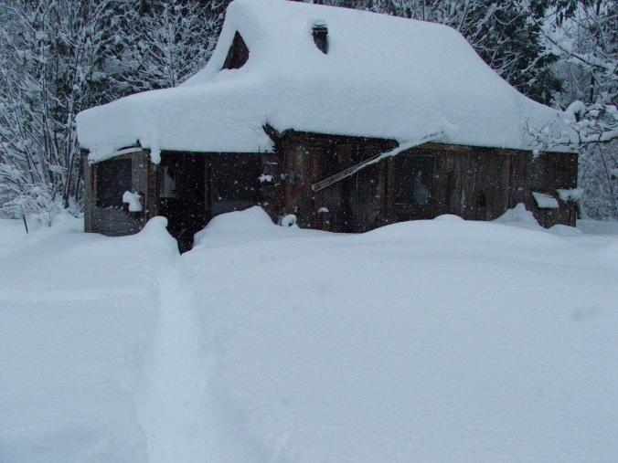 winter 08-09 002